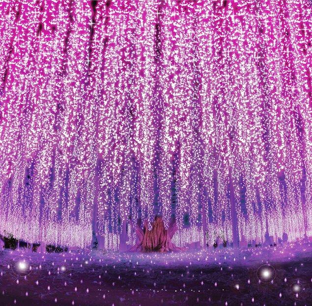 あしかがフラワーパーク「光の花の庭」 あしかがフラワーパーク