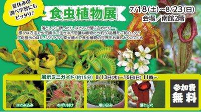 食虫植物展