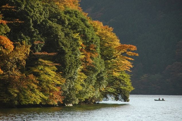 箱根(芦ノ湖)の紅葉