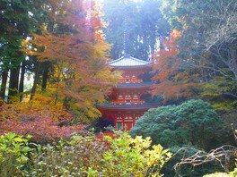 岩船寺の紅葉