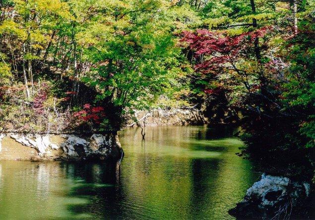 谷山自然公園の紅葉