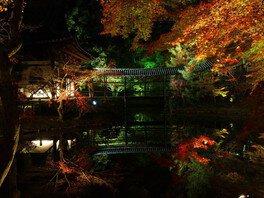 ライトアップされた紅葉が臥龍池に映り込む