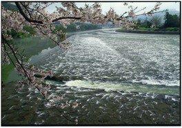 水土里のふるさと写真コンテスト入賞作品展示会