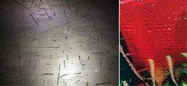 森二八子・ローレンス・ピクス Contemporary Art