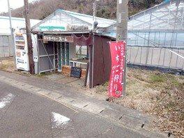 ストロベリーファーム21田中山店 いちご狩り