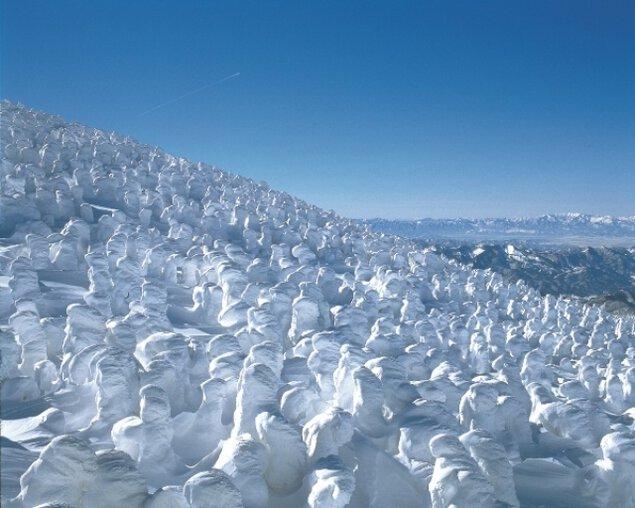 蔵王樹氷まつり