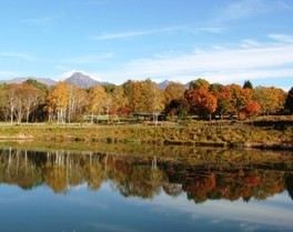 【紅葉・見ごろ】八ケ岳自然文化園