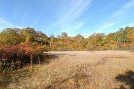 天生県立自然公園の紅葉