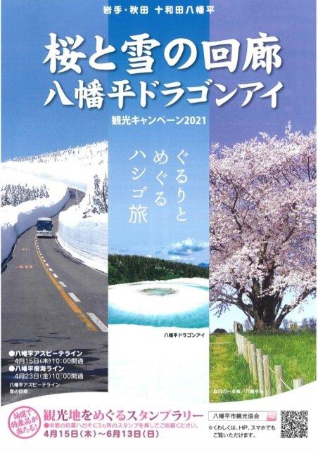 桜と雪の回廊・八幡平ドラゴンアイ 観光キャンペーン2021