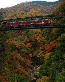 箱根(湯本)の紅葉