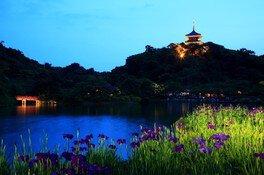 三溪園 蛍の夕べ