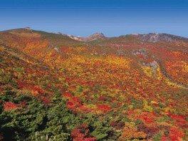 【紅葉・見ごろ】安達太良山