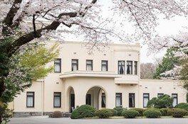 東京都庭園美術館の桜