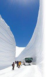 第25回 立山・雪の大谷ウォーク