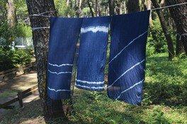 英国式庭園ワークショップ「ストールの草木染め(インド藍)」