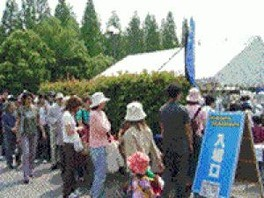 スワップミート in 花博公園(7月)