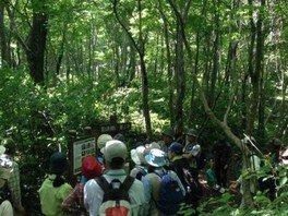 里山エコトレッキングツアー「触れよう・~木々の優しさ」