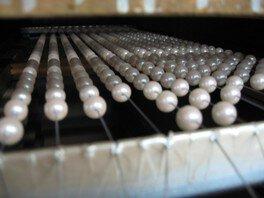 人造真珠工場見学