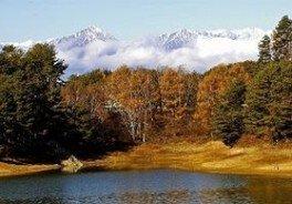 【紅葉・見ごろ】美鈴湖