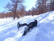 スノーシュー雪遊びツアー 「スノースライディング」 あさま軽井沢 バックカントリー  ソリ滑り