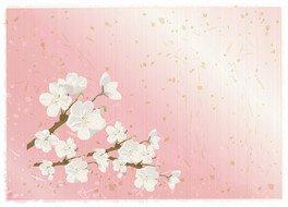 令和ゆかりの「梅」を描こう!