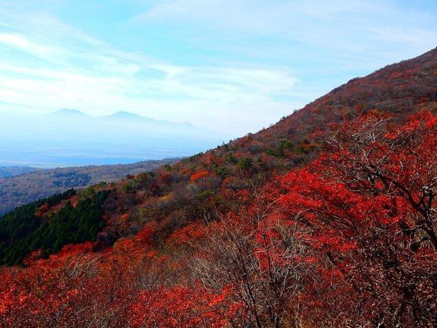 くじゅう連山の紅葉