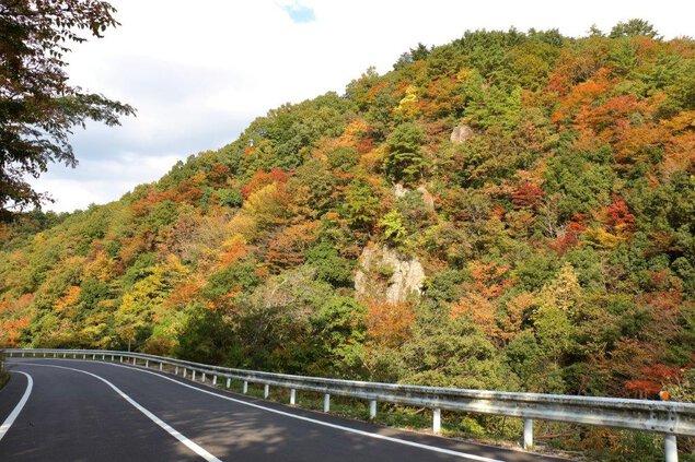 松ヶ谷渓谷の紅葉