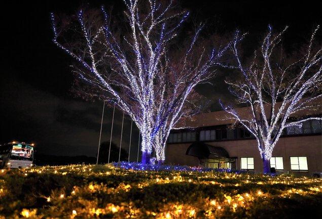 徳島文理大学イルミネーション(香川キャンパス) 徳島文理大学香川キャンパス