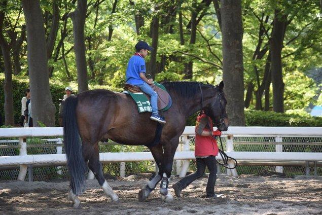 馬とあそぼうこどもの日