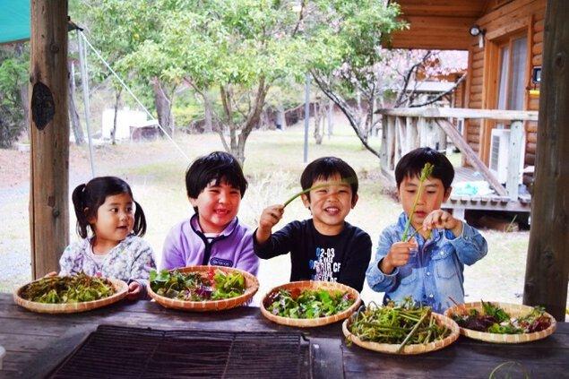 早川ファミリーキャンプ「探して食べよう! 春の山菜」<中止となりました>