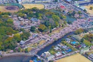 大村公園(大村神社)