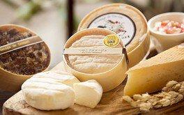 セトレマリーナびわ湖×湖華舞「五感でチーズの魅力を楽しむ&ランチ」