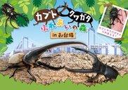 デックス東京ビーチ シーサイドモール 3F「デックス広場」