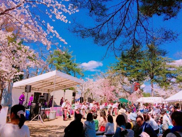 船岡公園桜まつり