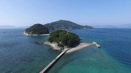 第14回ニホンバシ46ドウフケン:八幡浜大島