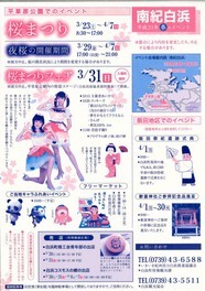 平草原公園桜まつり・夜桜
