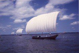 観光帆引き船操業2020