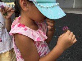 国営昭和記念公園 環境学習プログラム「青空たんけんDAY~ハチミツの秘密!」