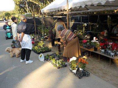 花と緑フェア 秋の植木市