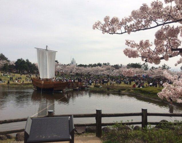日和山桜まつり