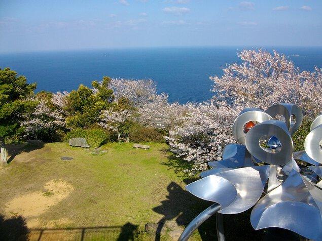権現山展望公園の桜
