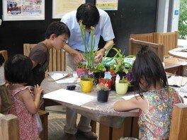 食虫植物解剖教室