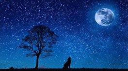 春の星空観察会