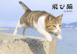 五十嵐健太 飛び猫写真展