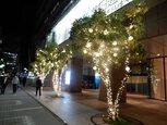 センチュリー豊田ビル クリスマスイルミネーション2020
