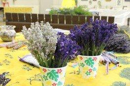茨城県植物園 ハーブ展~ハーブとアロマを楽しむ素敵な暮らし~