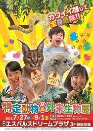 ShiMiZoo2019 特定動物&外来生物展