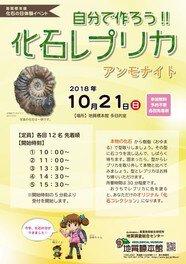 地質標本館 化石の日体験イベント「自分で作ろう!!化石レプリカ」