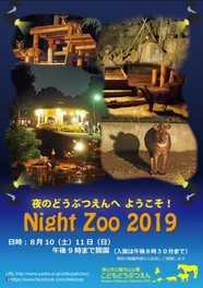 Night Zoo 2019