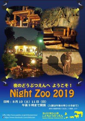 Night Zoo 2019